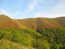 Sikt av de Carpathian bergen Royaltyfri Fotografi