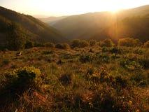 Sikt av de Carpathian bergen Arkivfoto