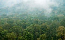 Sikt av de dimmiga bergen Arkivfoton