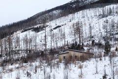 Sikt av de höga Tatras bergen i den Tatra nationalparken i Slovakien på vintern Arkivfoton