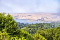 Sikt av de punktReyes National Seashore breda flodmynningarna till och med dimma från de fotvandra slingorna, Kalifornien royaltyfri fotografi