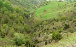Sikt av de Rhodope bergen, Bulgarien Arkivfoto
