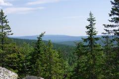 Sikt av de skogsbevuxna kullarna Royaltyfri Foto