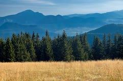 Sikt av de slovakiska bergen Fotografering för Bildbyråer
