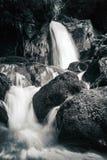 Sikt av de steniga forsarna i bergfloden Arkivfoto