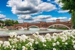Sikt av den Adige floden och den medeltida stenbron Ponte Scaligero i Verona nära Castelvecchio Arkivfoton