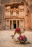 Sikt av den berömda alen-Khazneh (aka kassa) i Petra (Jordanien) arkivbild