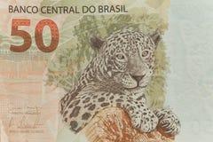 Sikt av den brasilianska sedeln/femtio reais Arkivbilder