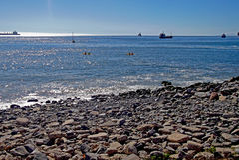 Sikt av den chilenska stranden och skepp royaltyfri bild