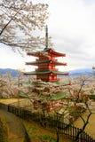 Sikt av den Chureito pagoden i Arakura Sengen relikskrinområde, Tokyo, Japan royaltyfria bilder