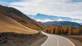 Sikt av den Chuya huvudvägen och gulinghöstskogen på en bakgrund av bergnord-Chuyakanten av den Altai republiken Royaltyfri Bild
