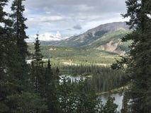 Sikt av den Denali nationalparken från att fotvandra slingan royaltyfri fotografi