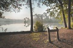 Sikt av den dimmiga sjön med träd reflekterade i vattnet och stolpen i förgrund royaltyfria foton