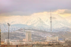 Sikt av den dimmiga staden av Almaty, Kasakhstan Arkivfoto