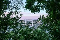 Sikt av den Eizabeth bron i Budapest till och med träd Royaltyfri Fotografi