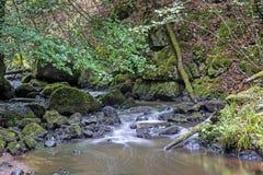 Sikt av den felika Glen Waterfalls Royaltyfri Bild