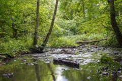 Sikt av den felika Glen Waterfalls floden Royaltyfri Bild