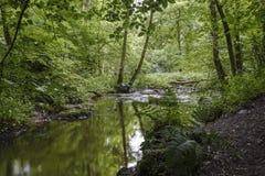 Sikt av den felika Glen Waterfalls floden Royaltyfri Foto