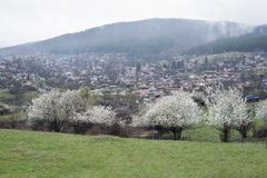Sikt av den folk museumZheravna byn i Bulgarien royaltyfria foton