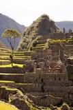 Sikt av den forntida Inca City av Machu Picchu, Peru royaltyfri bild