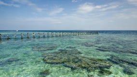 Sikt av den gamla brutna bryggan under solig dag med korall och gräsplan s Royaltyfri Foto