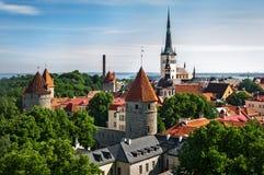 Sikt av den gamla staden av Tallinn från torn för ` s för St Olaf kyrkligt estonia tallinn Arkivfoton