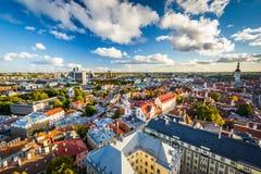 Sikt av den gamla staden från kyrkligt torn för St Olafs, i Tallinn Royaltyfri Bild