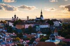 Sikt av den gamla staden från kyrkligt torn för St Olafs, i Tallinn, E Royaltyfri Foto