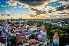 Sikt av den gamla staden från kyrkligt torn för St Olafs, i Tallinn, E Arkivfoto