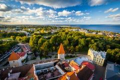 Sikt av den gamla staden från kyrkligt torn för St Olafs, i Tallinn, E Royaltyfria Foton