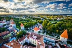 Sikt av den gamla staden från kyrkligt torn för St Olafs, i Tallinn, E Fotografering för Bildbyråer