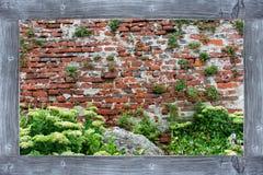 Sikt av den gamla tegelstenväggen med gröna växter och en alpin glidbana i en träåldrig ram royaltyfri bild