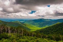 Sikt av den gamla trasan och Piedmont från horisontdrev i den Shenandoah nationalparken Arkivfoto