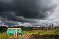 Sikt av den gjorde klar skogen på en molnig dag Arkivfoto