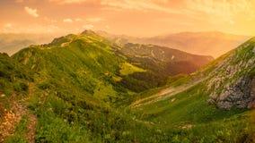 Sikt av den gröna dalen som omges av höga berg i ljuset av den gula solen för solnedgång Krasnaya Polyana, Sochi, Ryssland arkivfoto