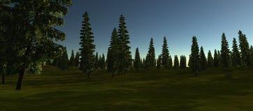 Sikt av den gröna granen i sommaren san för natt för fjärdbroca francisco tid Royaltyfri Fotografi