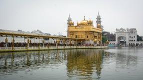 Sikt av den guld- templet med sjön i Amritsar, Indien Arkivfoto