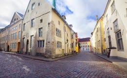 Sikt av den härliga gamla staden Tallinn estonia Royaltyfria Bilder