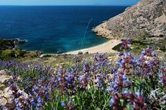 Sikt av den härliga stranden med steniga klippor Arkivfoto