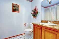 Sikt av den handfatkabinettet och toaletten Royaltyfri Foto