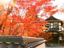 Sikt av den japanska templet i höst i Kyoto, Japan Royaltyfria Foton