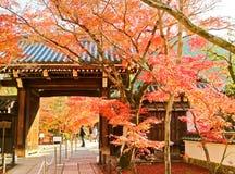 Sikt av den japanska templet i höst i Kyoto, Japan Arkivbilder