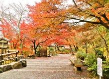 Sikt av den japanska trädgården i höst i Kyoto, Japan Royaltyfria Foton