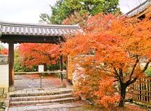 Sikt av den japanska trädgården i höst i Kyoto, Japan Fotografering för Bildbyråer