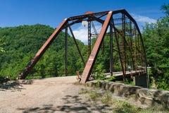 Sikt av den Jenkinsburg bron över fuskfloden royaltyfri foto