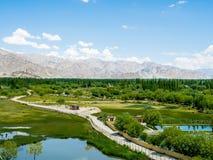 Sikt av den Leh staden, Ladakh, Indien Arkivfoton
