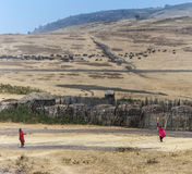 Sikt av den lilla byn i den Ngorongoro nationalparken i typisk läge Royaltyfri Bild