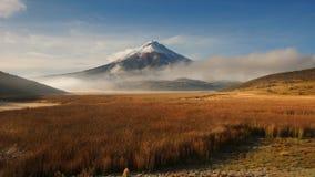 Sikt av den Limpiopungo lagun med vulkan Cotopaxi i bakgrunden på en molnig morgon Royaltyfria Foton