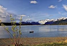 Sikt av den Mendenhall glaciären, Alaska, över den Gastineau kanalen Royaltyfri Bild