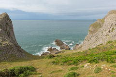 Sikt av den Mewslade fjärden med får den Gower kusten Wales Arkivfoto